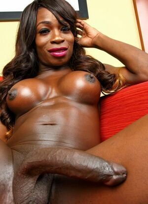 new ebony shemale