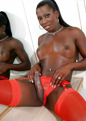 big black tranny ass